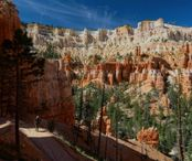 2Questions-026379 (Bryce Canyon National Park)
