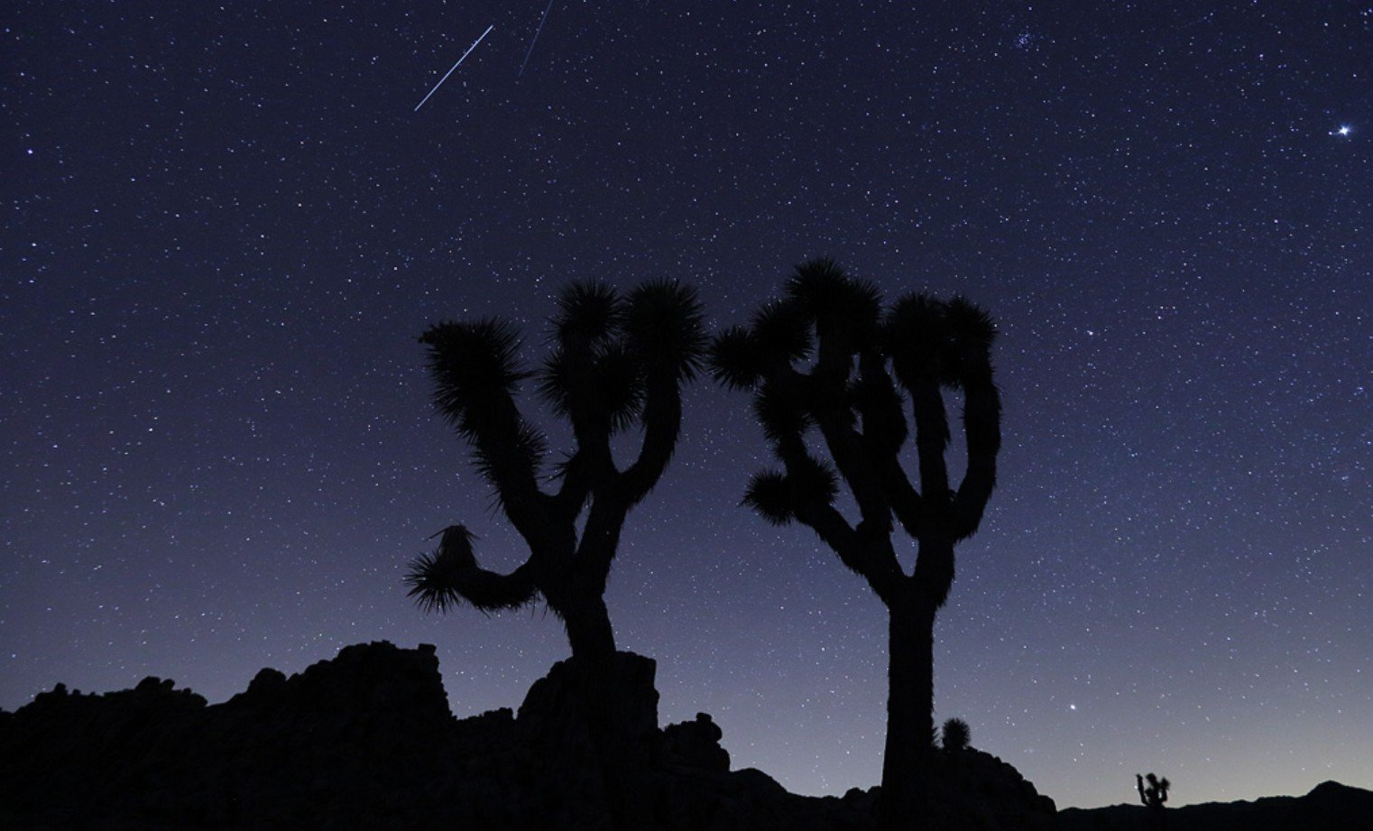 2Questions-021896 (Joshua Tree National Park, California, USA)