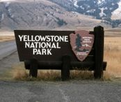 2Questions-016648 (Yellowstone National Park, usa)