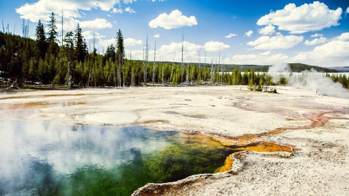 2Questions-016655 (Yellowstone National Park, usa)