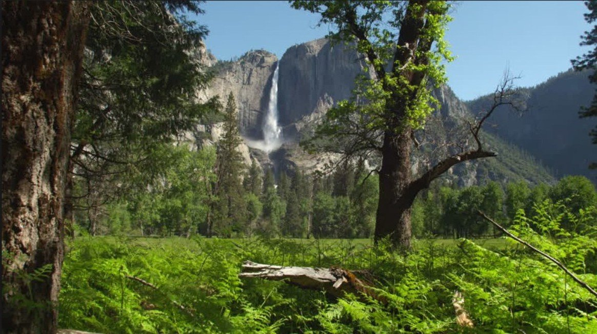 2Questions-016703 (Yosemite National Park, usa)