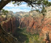 828718-Nature_Zion_National_Park