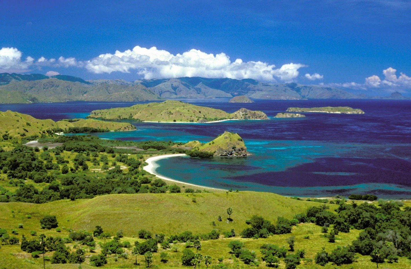 2Questions-029714 (Indonesia-Padar Island)