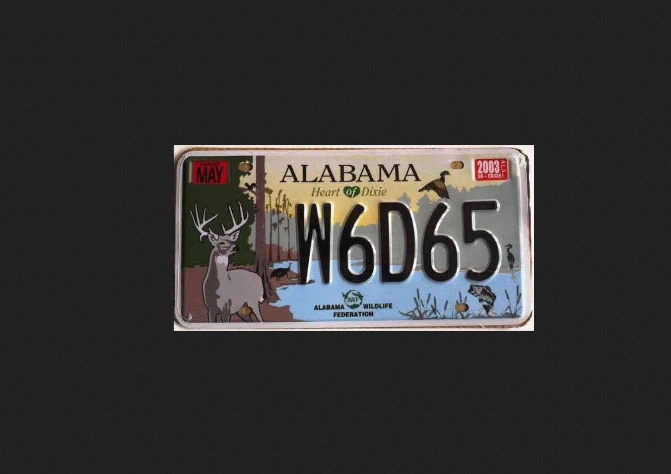 2Questions-032925-(Alabama_usa)
